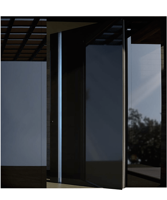 Usa exterior cu Rupere Termica 1020 Black Glass